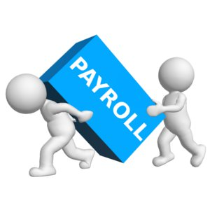 The Pay Role Ltd